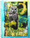 Finding Inspiration With Mixed Media Handbook