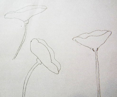 Sketch some simple flower shapes. I drew some simple outlines of poppies so that I could figure out how to draw them on the canvas. You can cut out those templates too, or just draw them where they fit best around your bird.