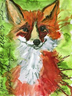 T4323_fox_250